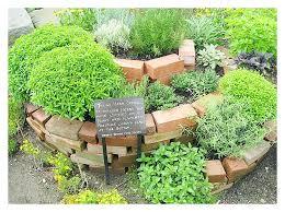 patio herb garden diy