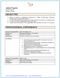 Resume Format For Two Year Experience - April.onthemarch.co