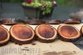 staining natural branch coasters diy project