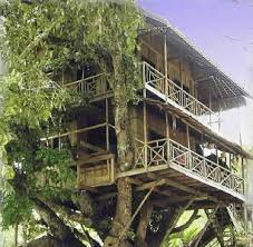 IrelandTreehouse Accommodation Ireland