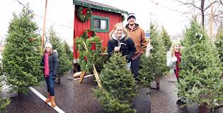 19 Best Artificial Christmas Trees 2017  Best Fake Christmas TreesWhen Should You Buy A Christmas Tree