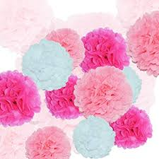 Paper Flower Balls To Hang From Ceiling Amazon Com 24pcs Craft Paper Tissue Pom Poms Ceiling Decor