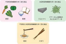 水溶 性 食物 繊維