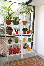 plant shelves ikea plants