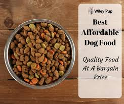 best affordable dog food 2018 edition quality food at bargain s wileypup