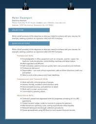 products professional resume templates sky s the limit professional resume template