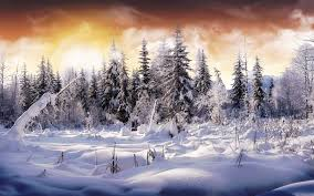 winter background images hd. Brilliant Winter HD Wallpaper  Background Image ID49262 1920x1200 Earth Winter In Images Hd I