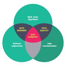 Data Analyst Job Duties Data Scientist Senior Junior Pipeline On Hold Cognitev