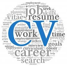 create a professional cv learn how to do it