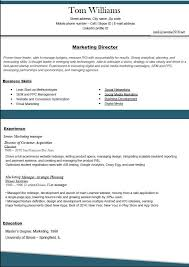 Resume Template 2016 Enchanting Best Resume Template 28 Free Download Flowersheet