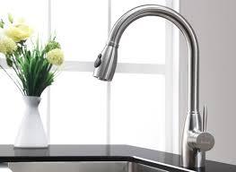 interior stylish kitchen design using best kitchen faucet poppingtonart com