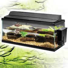 Turtle Tank Decor Turtle Tank Size Turtle Tank 2017 Fish Tank Maintenance