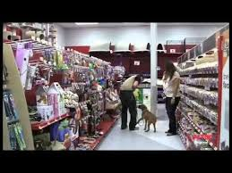 petco inside. Fine Petco Petco Dog Training Class Overview On Inside R