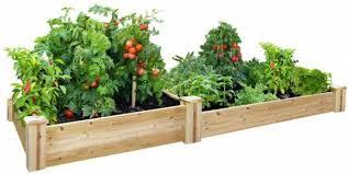 x 96 in cedar raised garden bed