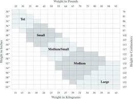 Bloch Tights Size Chart Fresh Sansha Shoe Size Patterson S