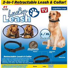 Image result for lucky leash