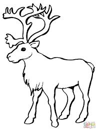 Kleurplaat Kerst Hert