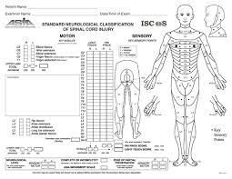 Spinal Cord Injury Chart Spinal Cord Injuries Spine Orthobullets