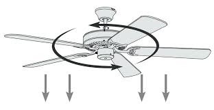 which direction should a fan go in the winter which direction should ceiling fans spin in