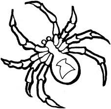Small Picture Black Widow Spider coloring page Free Printable Coloring Pages