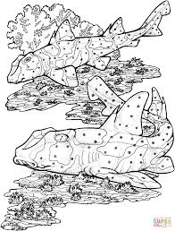Small Picture Horn Sharks coloring page Free Printable Coloring Pages