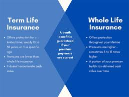 It combines a basic life insurance component with a cash (or dividend, or investment) component. Term Life Vs Whole Life Insurance How To Decide Hunt Insurance
