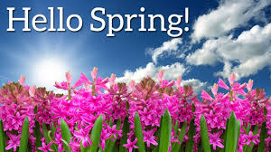 Spring Farmers' Market - Sustainability