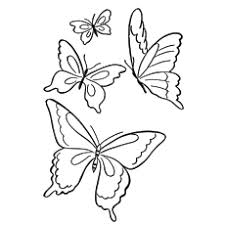 butterflies colouring pages. Plain Pages Butterflies Coloring Pages Inside Colouring MomJunction