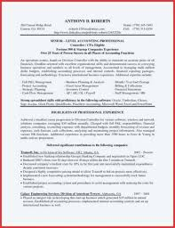 professional resume writing tips professional resume writing services linkedin template luxury tips