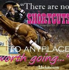 Barrel Racing Quotes Fascinating 48 Best Barrel Racing Images On Pinterest Horses Equestrian