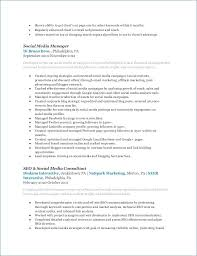 Social Media Manager Resume Awesome Entry Level Project Manager