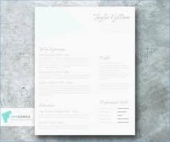Cv Template 40 Pages Best Of 40 Column Resume Template Igniteresumes Custom Resume 2 Pages