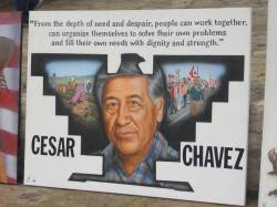 effective application essay tips for cesar chavez essays cesar chavez union leader and farm worker advocate was born near yuma arizona on 31 1927