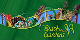 busch gardens in tampa. Busch Gardens Tampa News At CitySurfing Orlando. In