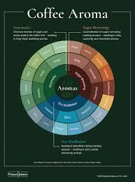 What Does Coffee Taste Like Coffee Wheel Coffee Taste