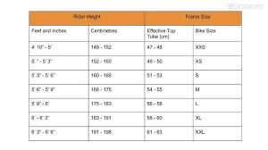 Bike Fitting Chart Road Bike Sizing What Size Bike Do I Need Bikeradar