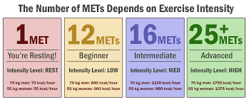 31 Complete Metabolic Equivalents