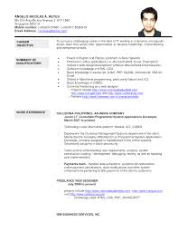 Singapore Resume Format Resume Template Sample