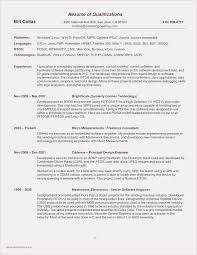 Download 53 It Resume Template Simple Free Professional Template