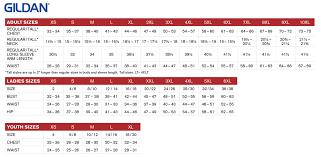 Gildan Size Chart Nasa Apparel