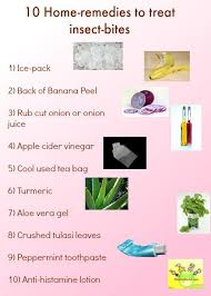 First Aid/ Home Remedies for Insect Bites
