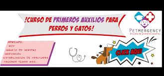 Chicas En Tarifa, chihuahua, contactos Mujeres