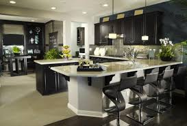 Ultimate Kitchen Design Cool Design Inspiration