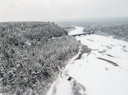 <b>bridge</b> on river near <b>forest</b> covered with <b>snow</b> photo – Free Black ...