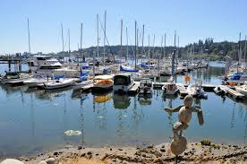 a marina on bainbridge island