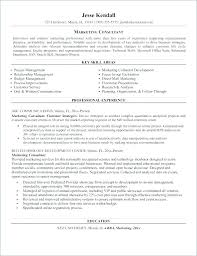 Sample Car Salesman Resumes Sample Marketing Consultant Resume Car Salesman Resume Samples Car