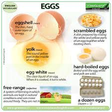 Egg Cooking Chart Egg Vocabulary 7 Words Associated With Eggs Woodward