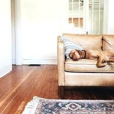 leather sofa splendid 3 see west elm on hamilton used dream couch 1 photograph tan west elm leather sofa used hamilton