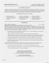 Free Professional Resume Templates Fascinating Professional Resume Template Inspirational Resume Coach New Free