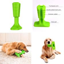 dogs toothbrush stick